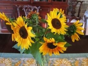 Dahlias & Sunflowers Aug 2014 023